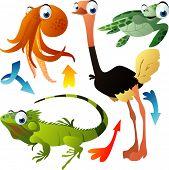 Постер, плакат: Векторные животных: осьминог страуса черепахи игуаны