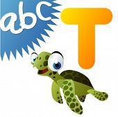 picture of sea-turtles  - T is for Turtle - JPG