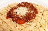 Spaghetti Macro Horizontal poster