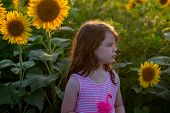 View Of Beauty Joyful Young Girl With Sunflower Enjoying Nature And Laughing On Summer Sunflower Fie poster