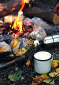 Camping Outdoors In The Fall With A Bonfire And Coffee In White Enamelled Iron Mug With A Thermos An poster