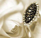 stock photo of diamond ring  - black diamond ring with rose background - JPG