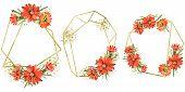 Watercolor Orange Gazania Flowers. Floral Botanical Flower. Frame Border Ornament Square. Aquarelle  poster