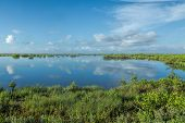This Is A View Of The Wetlands At The Merritt Island National Wildlife Refuge. The Refuge Is An Impo poster