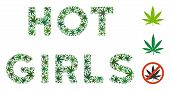 Hot Girls Label Collage Of Weed Leaves In Various Sizes And Green Tints. Vector Flat Weed Leaves Are poster