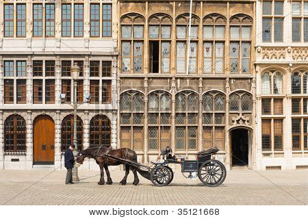 Antwerp Grote Markt Horse Buggy Driver Guildhouse