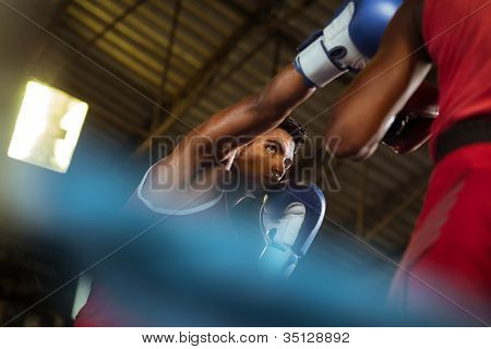 Two Male Athletes Fight In Boxing Ring