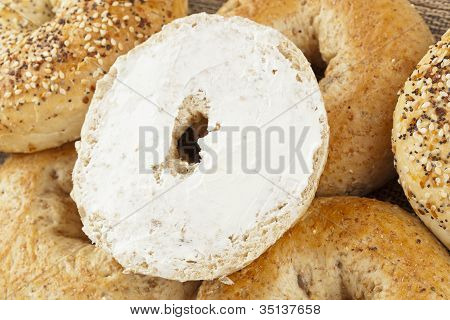 Homemade Fresh Whole Grain Bagel