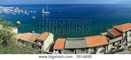 Scilla Coast