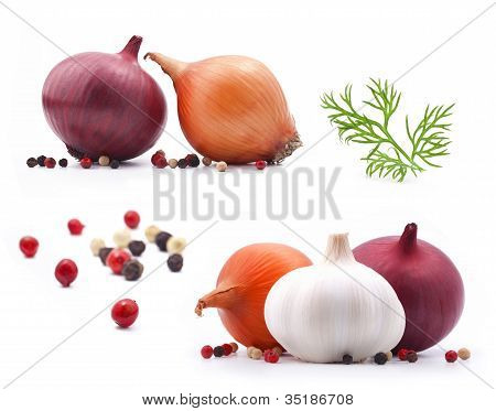 Collection of onion and garlic with dill