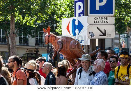 Le Tour De France Fans