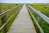 stock photo of dune grass  - long wooden walkway across grass dune to ocean beach - JPG