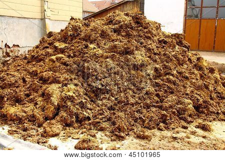 Big Pile Of Manure, As Background