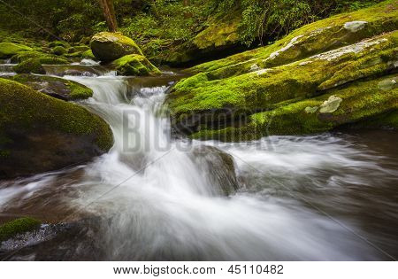 Roaring Fork Great Smoky Mountains National Park Cascade Gatlinburg Tn