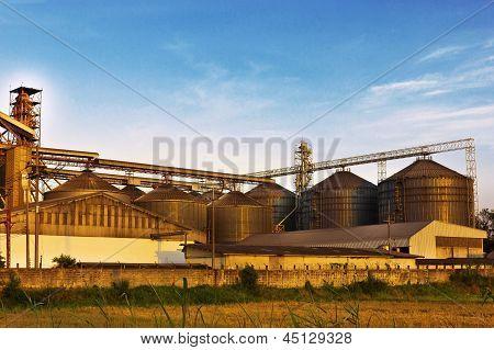 Agricultural thai against blue sky