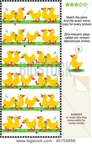 Visual puzzle: find the mirror copy for every picture - ducklings
