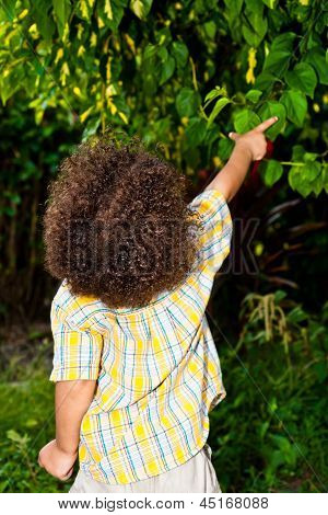 Boy Pointing Out Nature