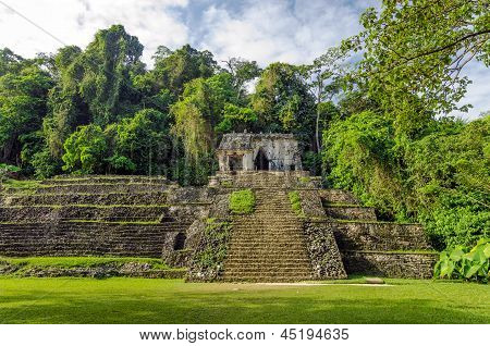 Ancient Temple And Jungle
