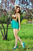 pic of leggy  - Young leggy brunette in short sexy dress posing near the tree - JPG