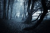 stock photo of rainy weather  - Strange man walking in a dark spooky forest on halloween - JPG
