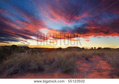 Beautiful Kalahari Sunset With Dramatic Clouds And Grass