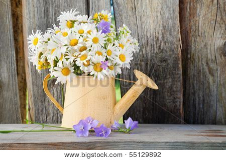 Watering Can With Summerdaisies Flowers On Wooden Background