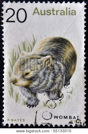 A stamp printed in Australia shows image of a Wombat