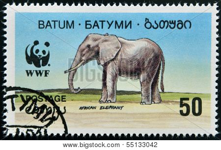 A stamp printed in Batumi shows african elephant