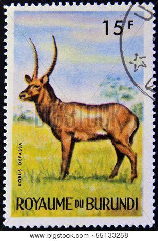 stamp printed in Kingdom of Burundi shows an African animal - Antelope