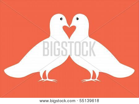 Pair Of Doves In Love, Vector Illustration, Valentine Card Design
