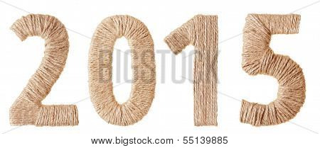 Twenty-fifteenth  New Year of the tissue digits