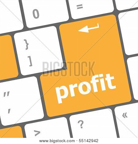 Profit Button On Computer Keyboard Key