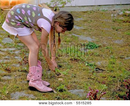 8 Year Old Girl Pulling Weeds