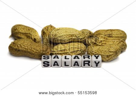 Salary As Peanuts