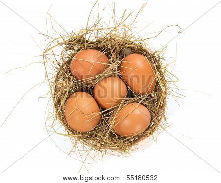 Eggs, hay in a bast basket