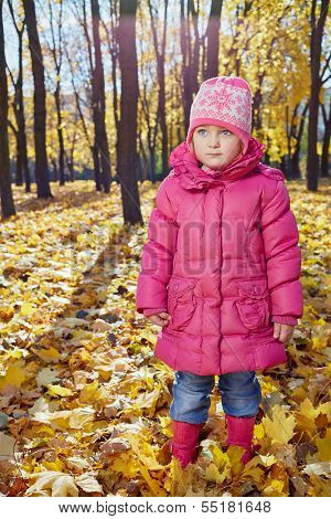Little girl stands in autumn park on fallen yellow leaves