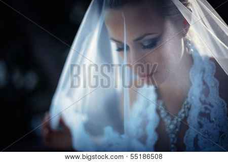 Beautiful young bride with a veil