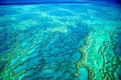 stock photo of creatures  - Aerial of the Great Barrier Reef in the Whitsundays - JPG
