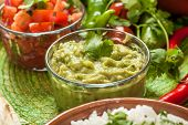 image of cilantro  - traditional mexican food - JPG