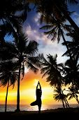 image of siluet  - Yoga tree pose silhouette by man at palm trees ocean and sunset sky background in India - JPG