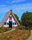Charming rural house. Thatched house with a gable roof, two small windows and a front garden