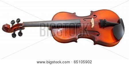 Typical Wooden Fiddle Isolated On White
