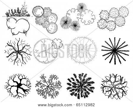 A set of treetop symbols , for architectural or landscape design, black and white