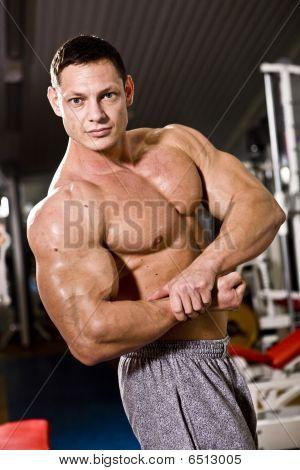 Bodybuilder Posing At Gym