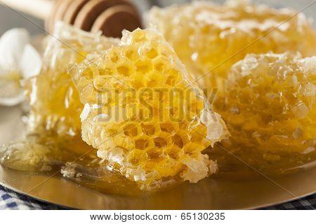 Organic Raw Golden Honey Comb