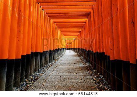 Fushimi Inari Taisha Shrine in Kyoto City, Japan, shooting at public area