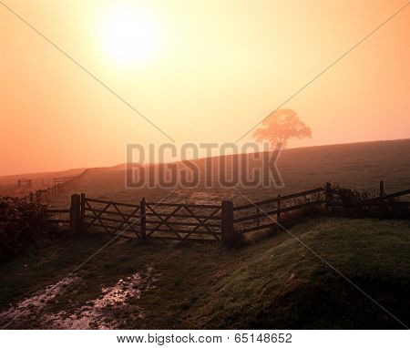 Farmland on misty day, UK.