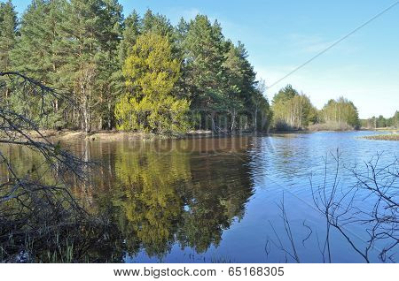 Quiet River Backwater In The Spring