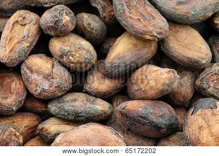 background of dried unpeeled cocoa beans