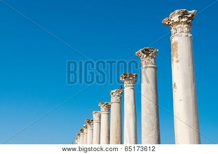 Colonnade In The Ancient Ruins Of Salamis City. Famagusta. Cyprus